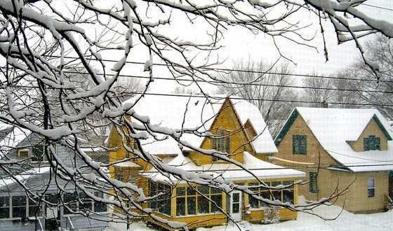 Tips To Prepare Your Home For Winter Buzz Around